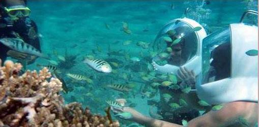 Bali Marine Walk 2