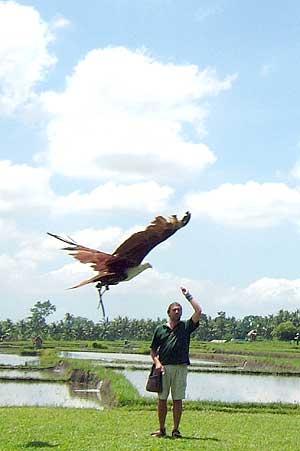 Bird Park Free Flight