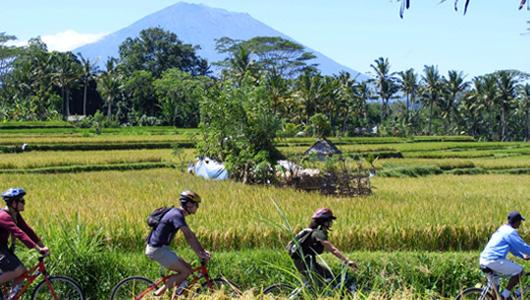 Eco Cycling 1