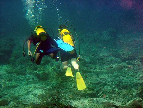 Quicksilver Diving 1