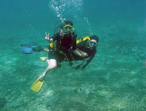 Quicksilver Diving 2