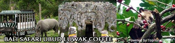 Bali-Safari-Ubud-Luwak-Coffee