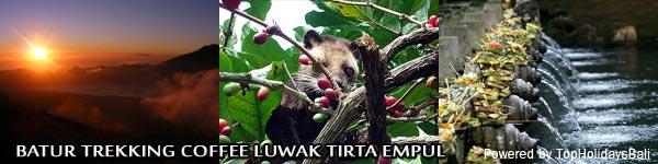 Batur-Trekking-Coffee-Luwak-Tirta-Empul