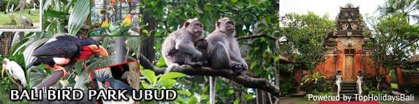 Bird-Park-Ubud