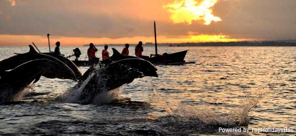Bali-Lovina-Dolphin